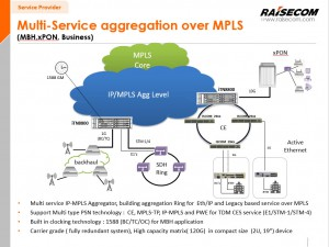 raisecom_mpls_multi_service
