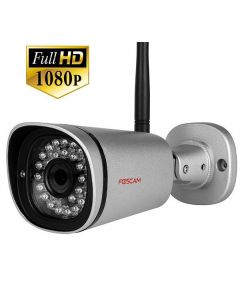 FI9900P - Outdoor IP Камера - Silver