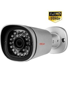 FI9900ЕP - Outdoor IP Камера - Silver