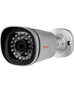 FI9901ЕP - Outdoor IP Камера - Silver
